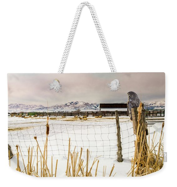 Keeping Watch Weekender Tote Bag