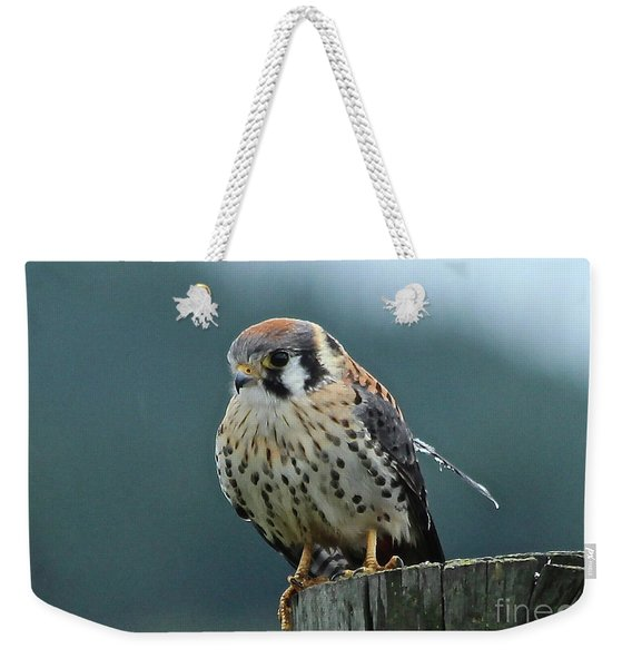 Kestrel Hawk Weekender Tote Bag