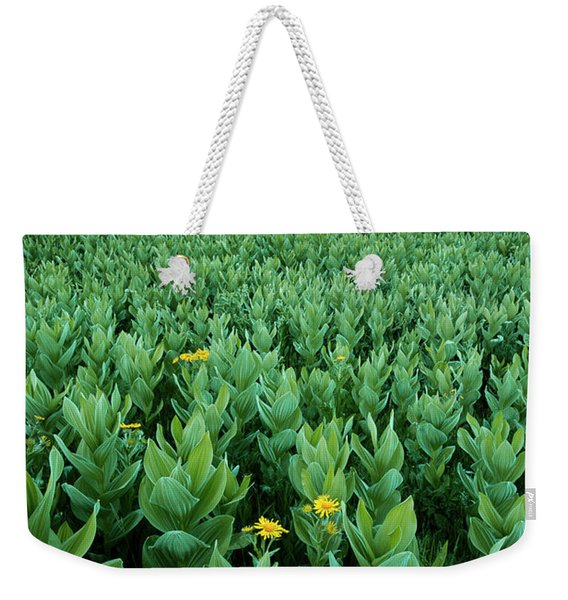 Kilpacker Basin Weekender Tote Bag