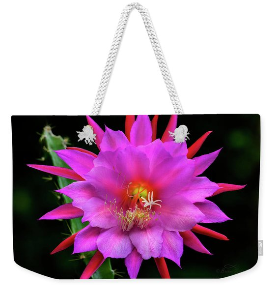 Kimnach's Pink Orchid Cactus Weekender Tote Bag