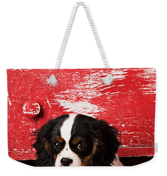 King Charles Cavalier Puppy  Weekender Tote Bag