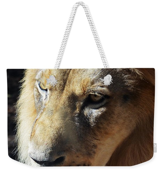 King Of The Jungle Majestic Lion Head Face Eyes Square Macro Weekender Tote Bag