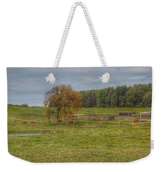 1002 - Kingston Road Cows Weekender Tote Bag