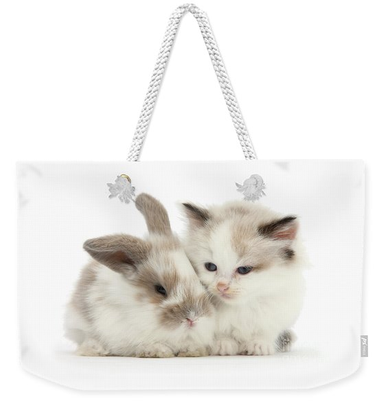 Kitten Cute Weekender Tote Bag