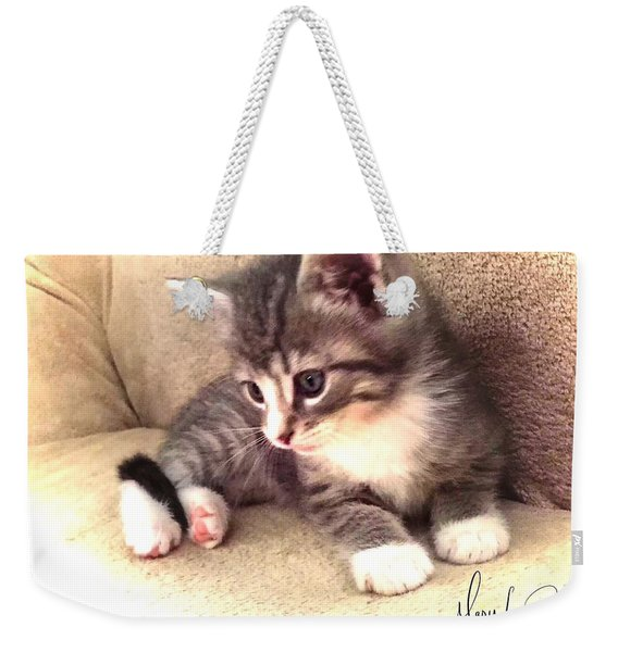 Kitten Deep In Thought Weekender Tote Bag