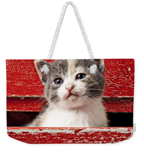 Kitten In Red Drawer Weekender Tote Bag