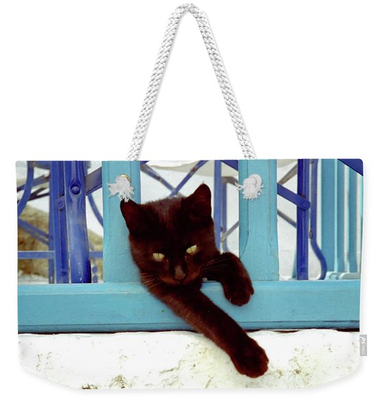 Weekender Tote Bag featuring the photograph Kitten With Blue Rail by Frank DiMarco