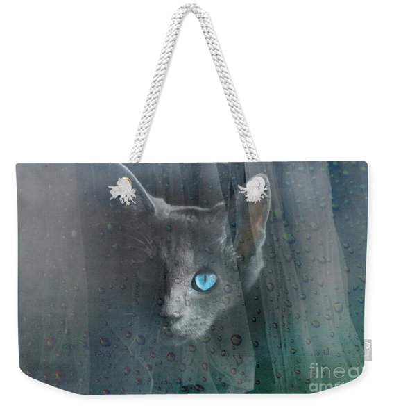Kitty At The Window Weekender Tote Bag
