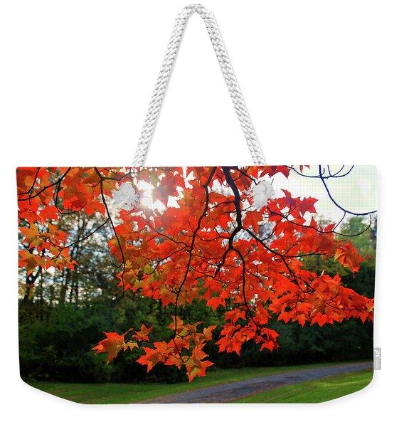 Knox Park 8444 Weekender Tote Bag