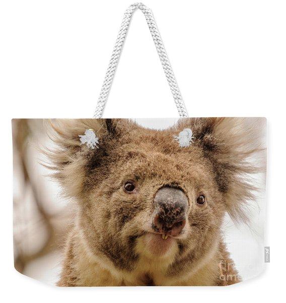 Koala 4 Weekender Tote Bag