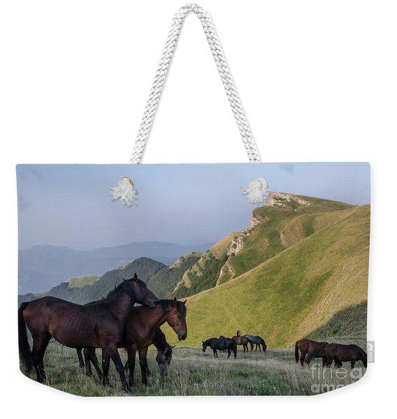 Kobilini Steni Peak Horses-1 Weekender Tote Bag