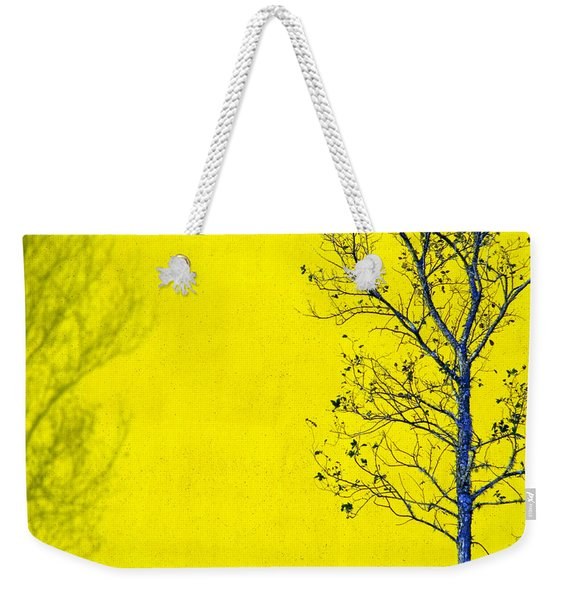Weekender Tote Bag featuring the photograph Krishna by Skip Hunt