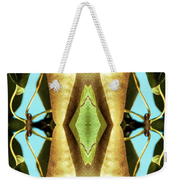 Weekender Tote Bag featuring the mixed media KV5 by Writermore Arts