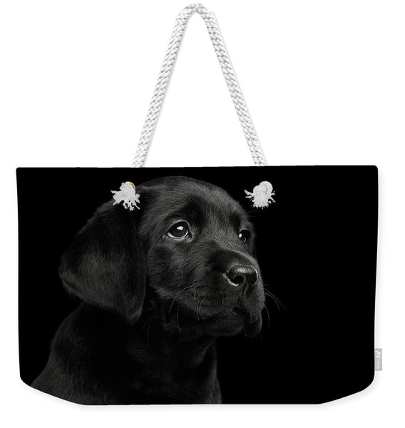 Labrador Retriever Puppy Isolated On Black Background Weekender Tote Bag