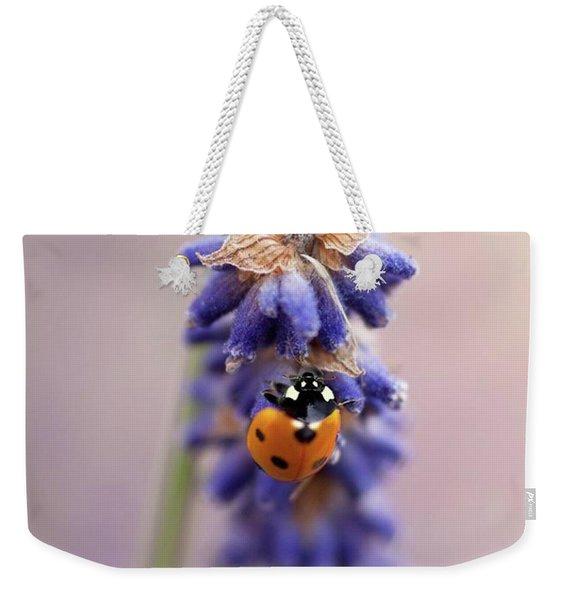 Ladybird On Norfolk Lavender  #norfolk Weekender Tote Bag
