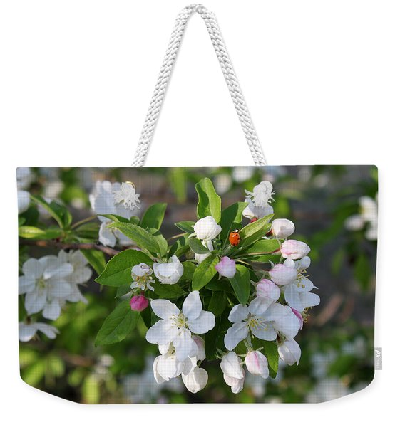 Ladybug On Cherry Blossoms Weekender Tote Bag