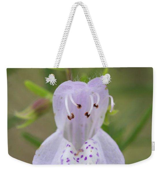 Largeflower False Rosemary #1 Weekender Tote Bag