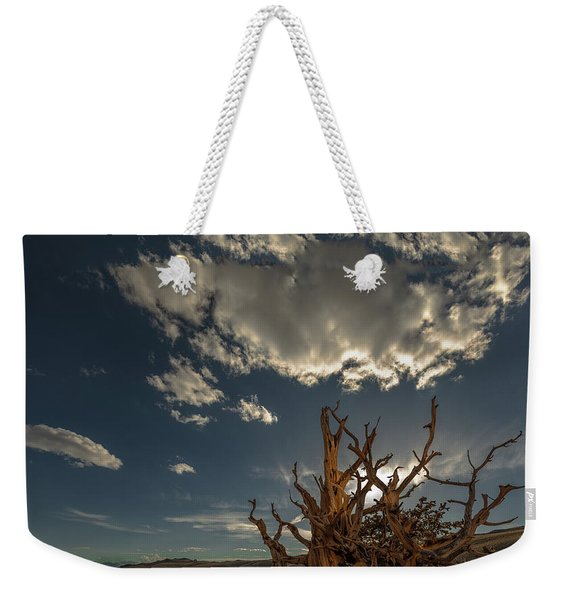 Late Afternoon In The Bristlecone Forest Weekender Tote Bag