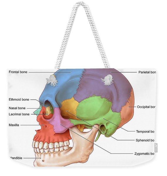 Lateral Skull, Illustration Weekender Tote Bag