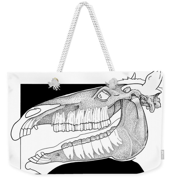 Lateral View Of Equine Skull Weekender Tote Bag