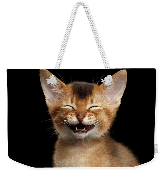 Laughing Kitten  Weekender Tote Bag