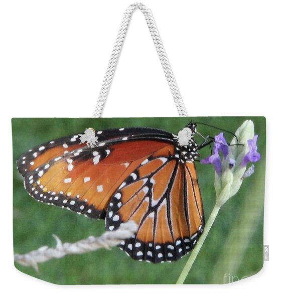 Weekender Tote Bag featuring the photograph Lavender Lunch by Kim Nelson