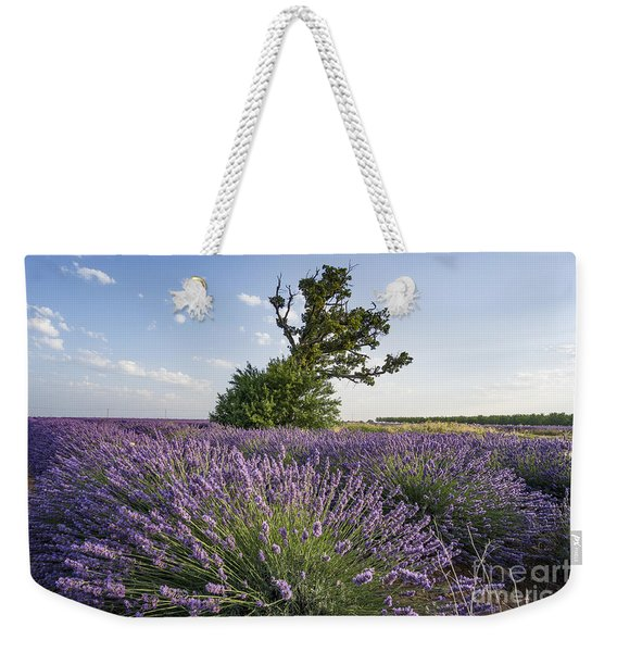 Weekender Tote Bag featuring the photograph Lavender Provence  by Juergen Held