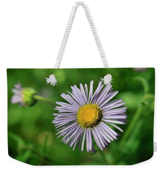 Lavender Serenity Weekender Tote Bag