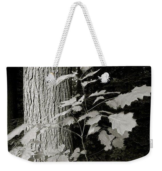 Leaf And Tree Weekender Tote Bag