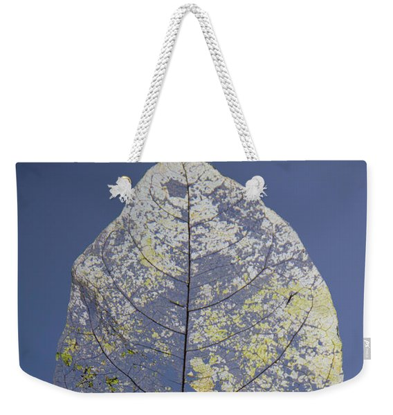 Weekender Tote Bag featuring the photograph Leaf by Debbie Cundy