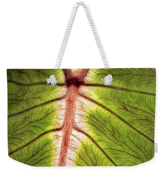 Leaf With Veins Weekender Tote Bag