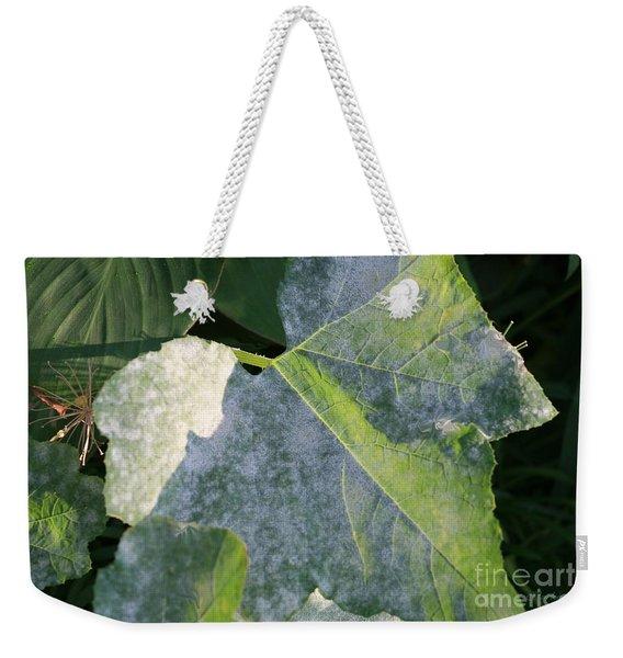 Calming Leafy Glade Weekender Tote Bag