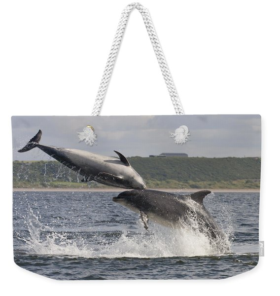 Leaping Bottlenose Dolphins - Scotland  #38 Weekender Tote Bag