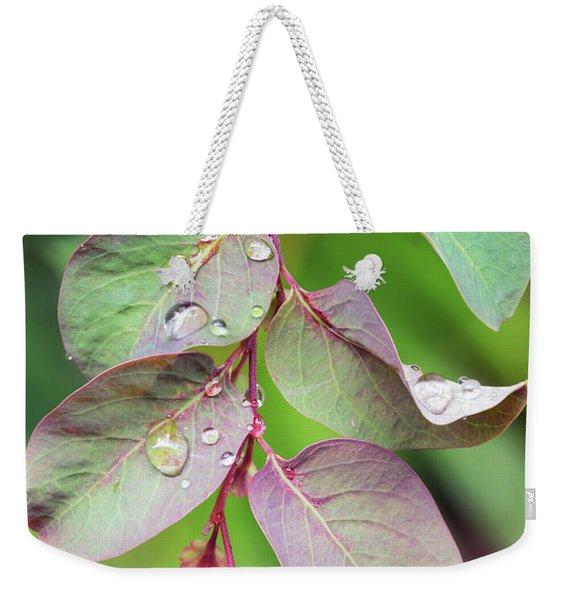 Leaves And Raindrops Weekender Tote Bag