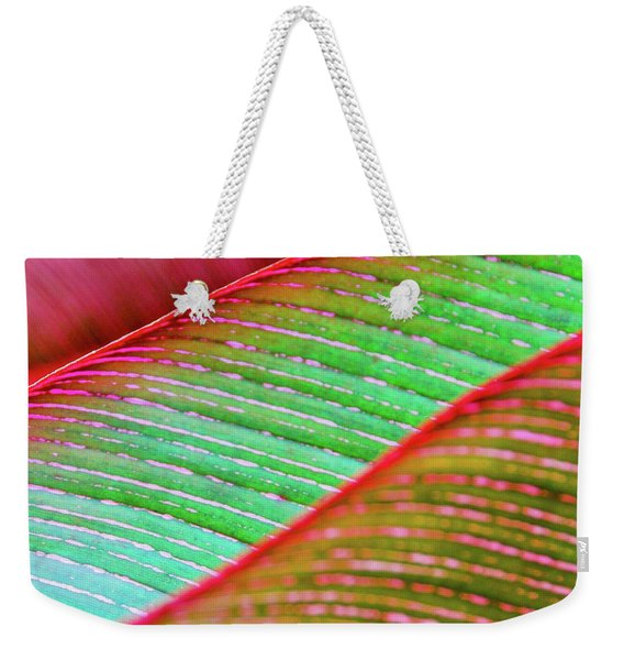 Leaves In Color  Weekender Tote Bag