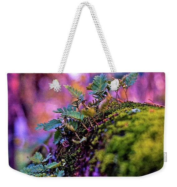 Leaves On A Log Weekender Tote Bag