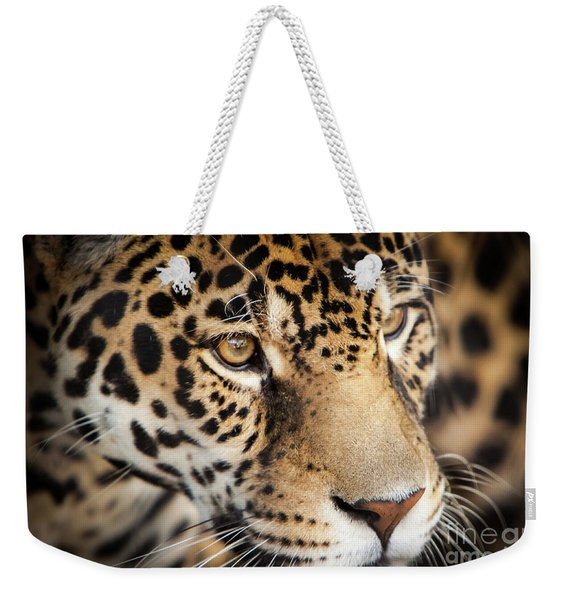 Weekender Tote Bag featuring the photograph Leopard Face by John Wadleigh