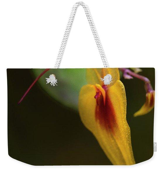 Lepanthes Maxonii Orchid Macro Weekender Tote Bag