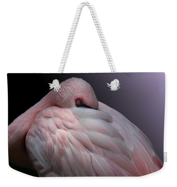 Lesser Flamingo Resting Weekender Tote Bag