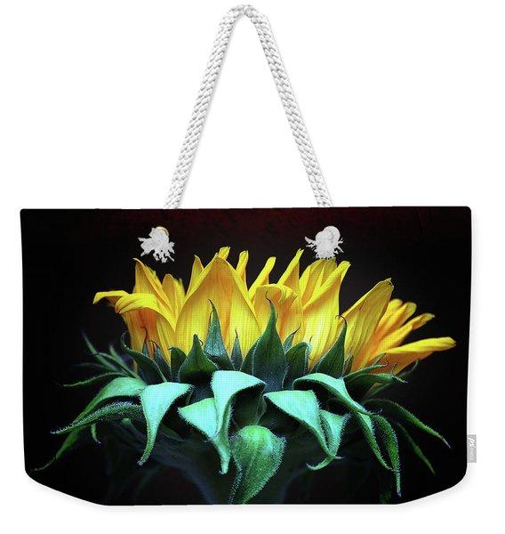Let The Sunshine In Weekender Tote Bag