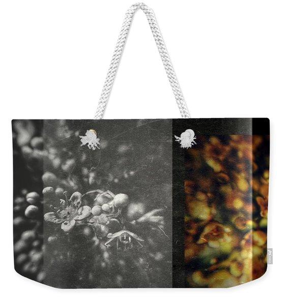 Let The Wind Go Weekender Tote Bag
