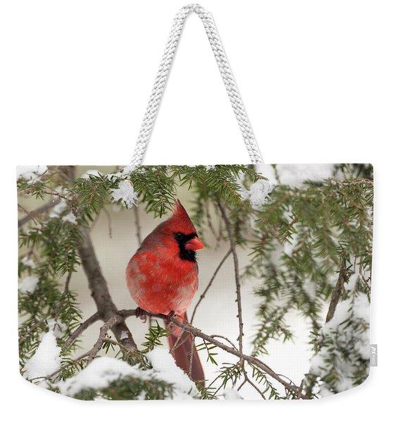 Leucistic Northern Cardinal Weekender Tote Bag