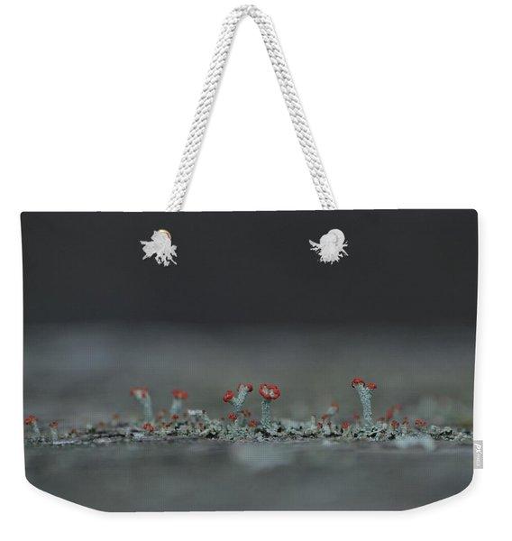 Lichen-scape Weekender Tote Bag