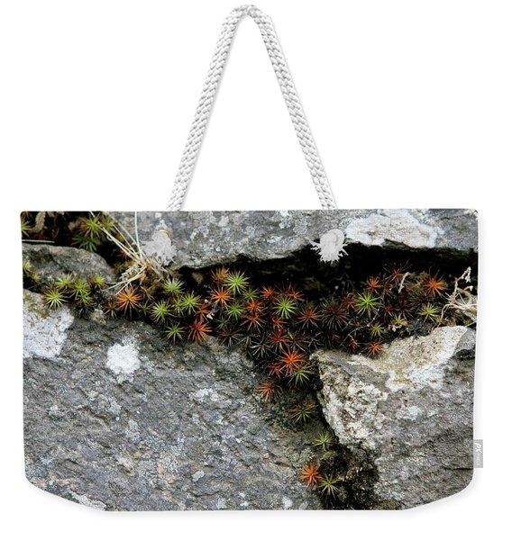 Life Lived In The Cracks Weekender Tote Bag
