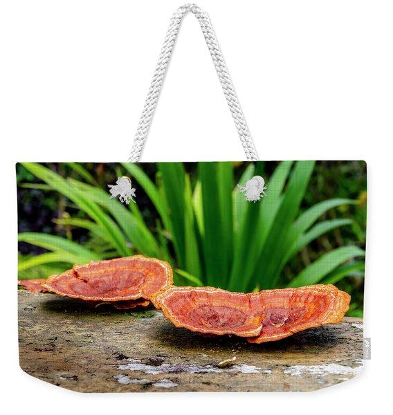 Life On A Log Weekender Tote Bag