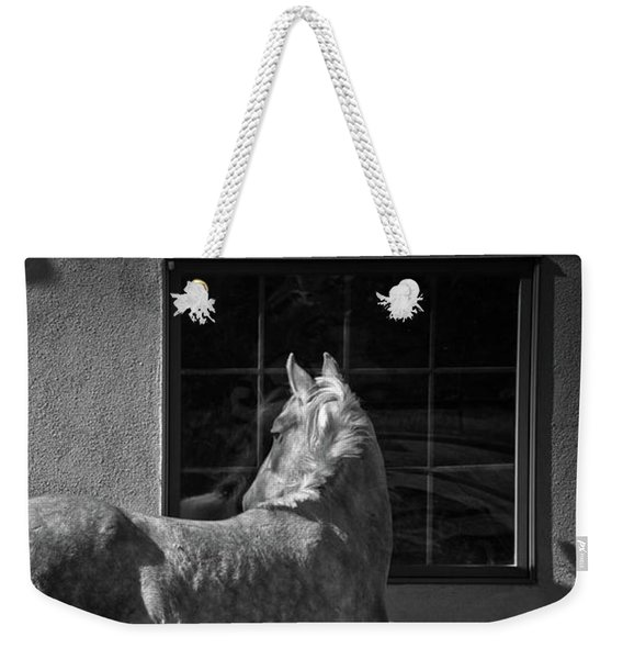 Weekender Tote Bag featuring the photograph Light And Shadow by Catherine Sobredo