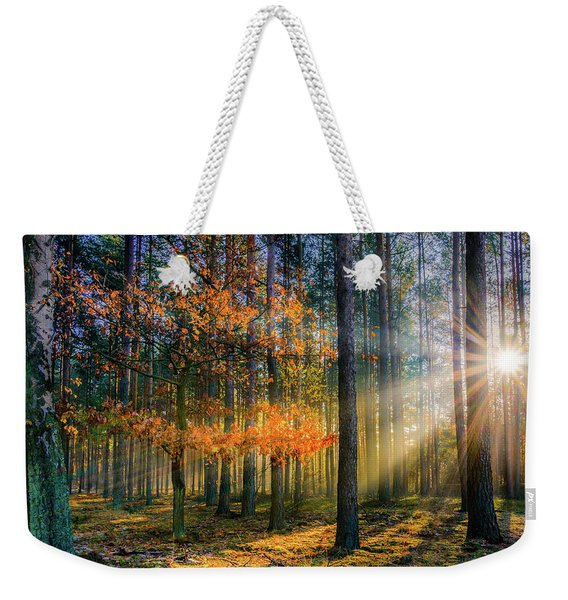 Weekender Tote Bag featuring the photograph Light Catcher by Dmytro Korol