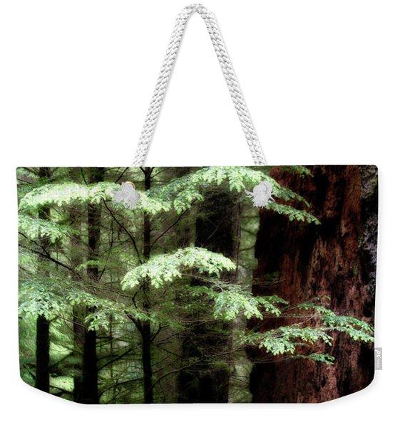 Light On Trees Weekender Tote Bag