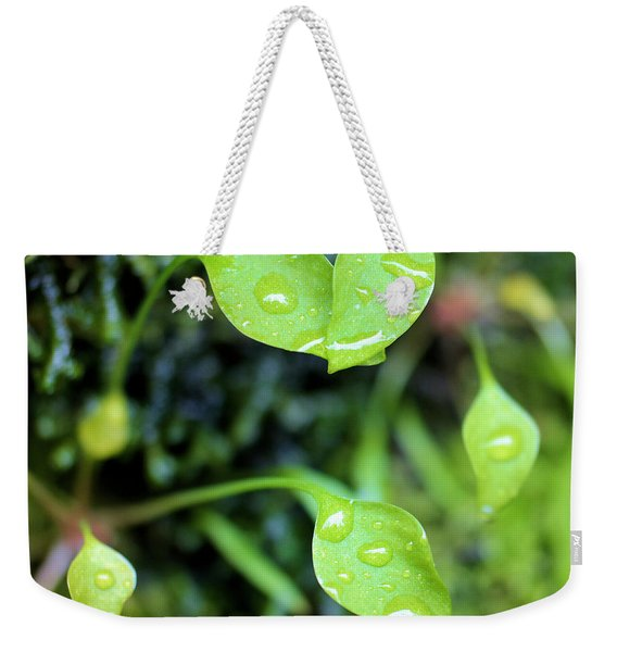Like Little Chalices  Weekender Tote Bag