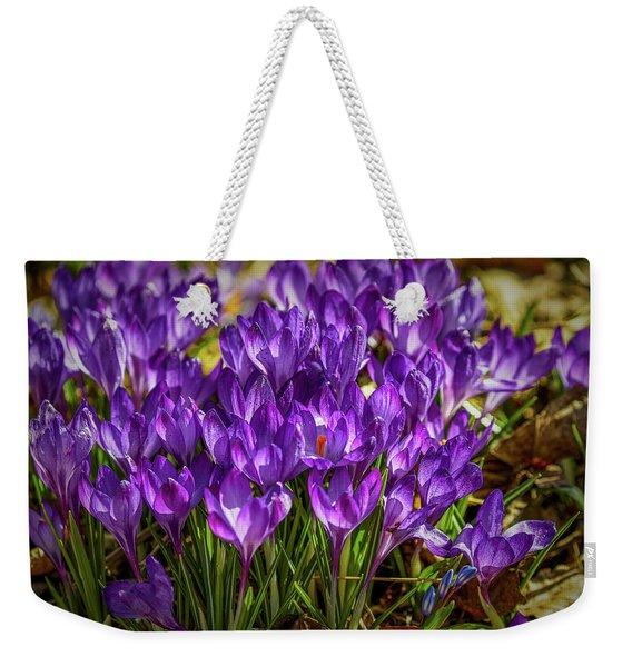 Lilac Crocus #g2 Weekender Tote Bag